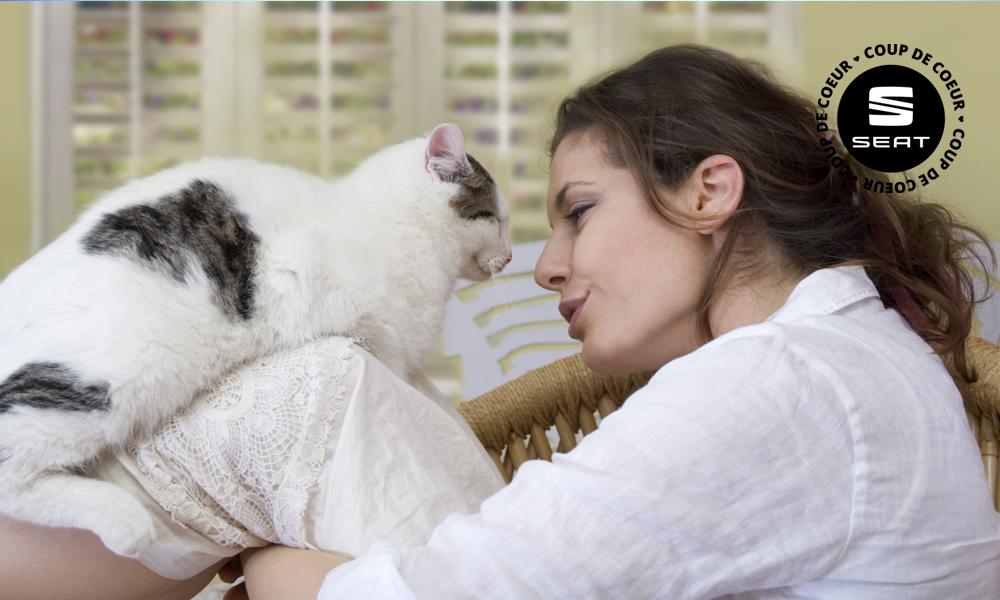 Et si vous pouviez parler à votre chat ?