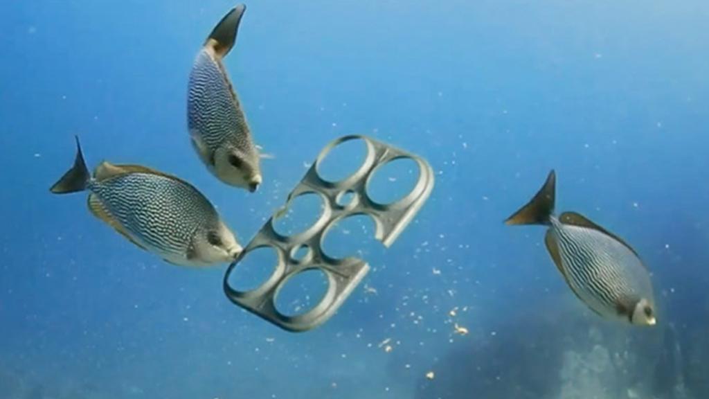 Une marque de bière a trouvé comment sauver la mer de la pollution