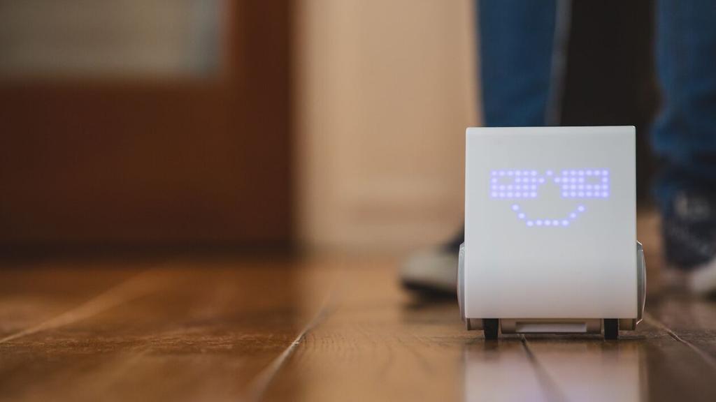 Codeybot : votre enfant sera-t-il le prochain Zuckerberg ?
