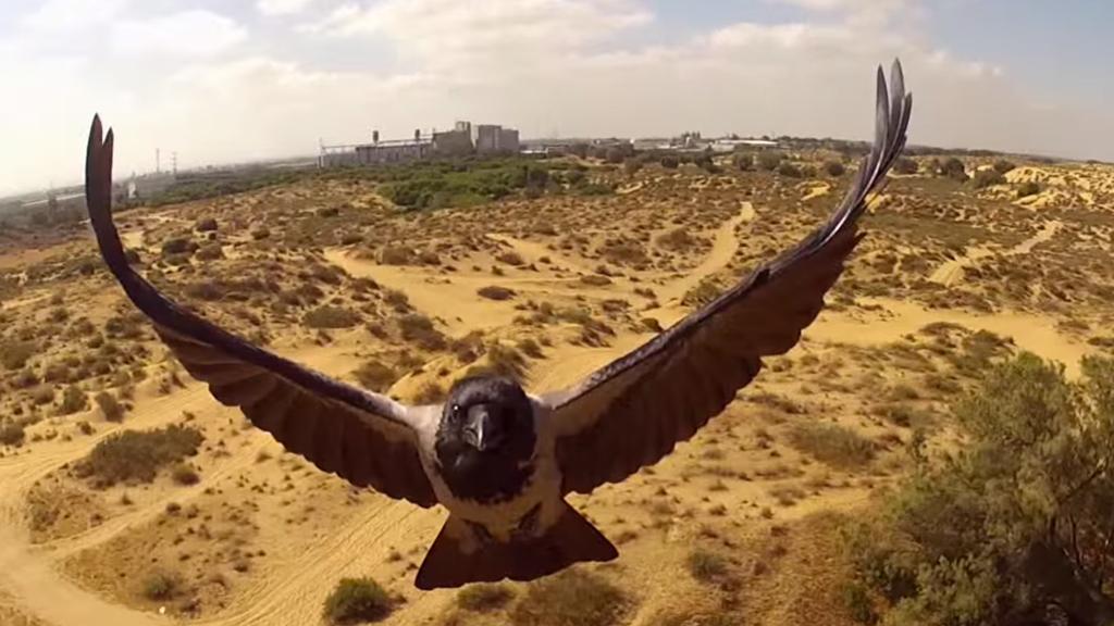 Un code de conduite pour les drones a été voté