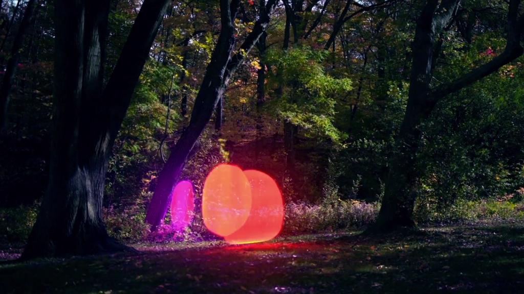 Des lumières fluorescentes se baladent dans la forêt