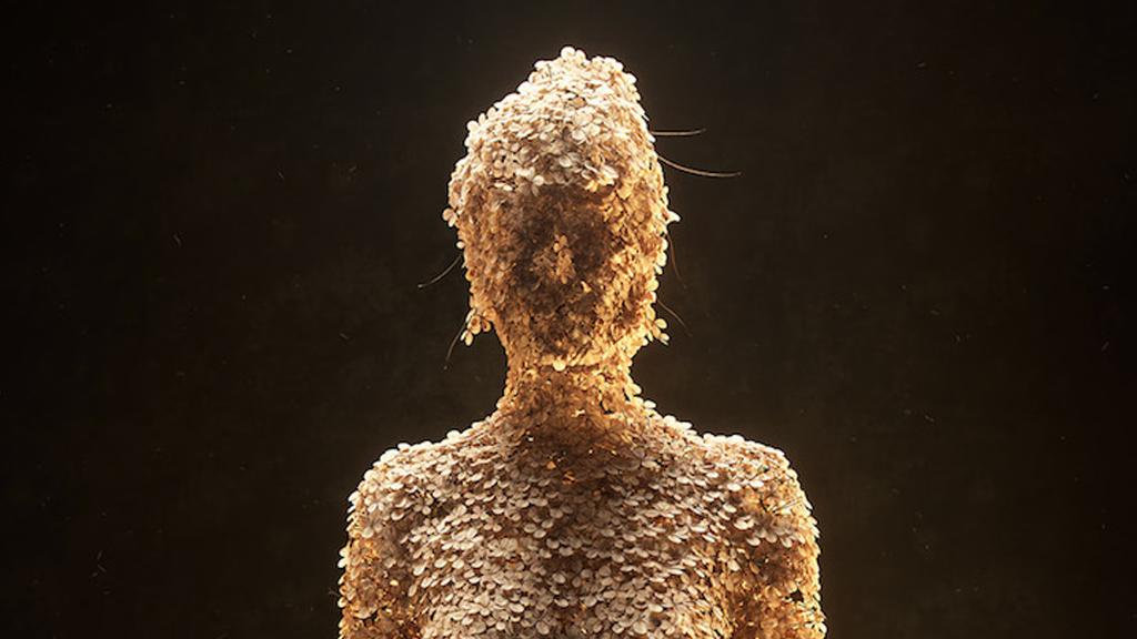 Les figures florales numériques
