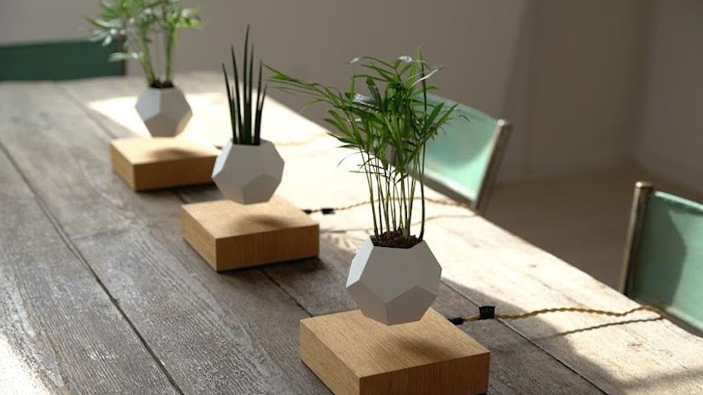 Votre jardin lévitera bientôt dans votre salon