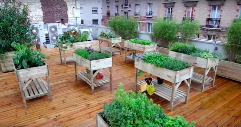 Détours - Des toits végétalisés en plein cœur de Paris