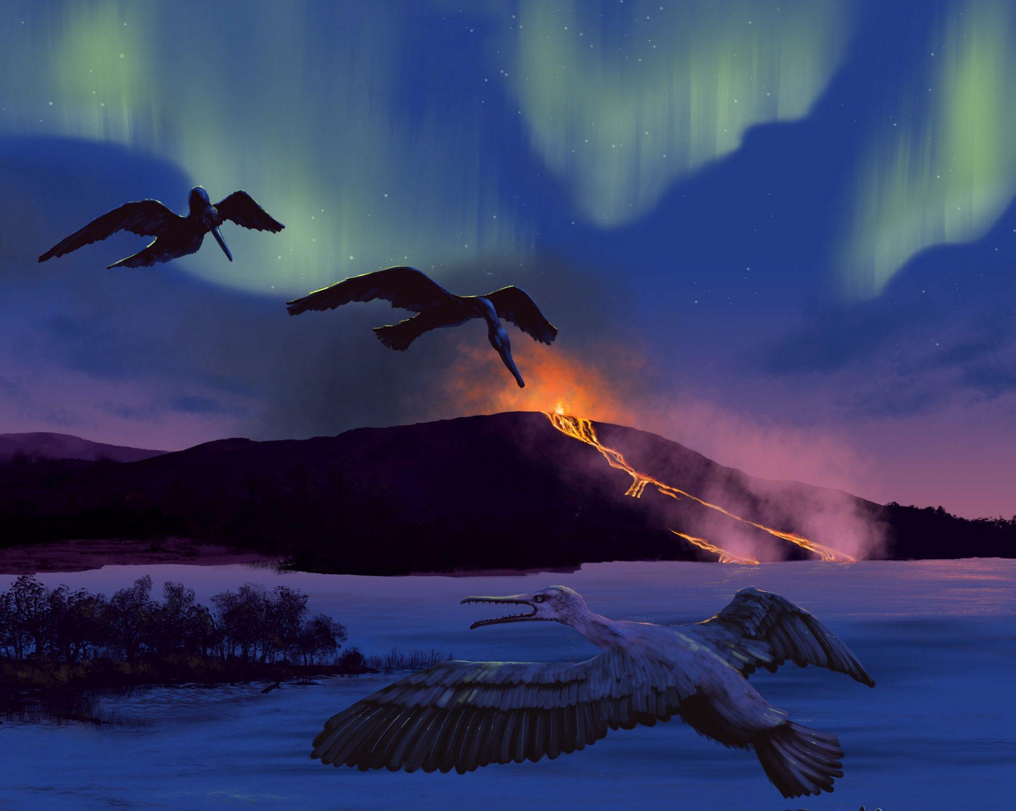 Un oiseau vieux de 90 millions d'années pour prévoir l'avenir