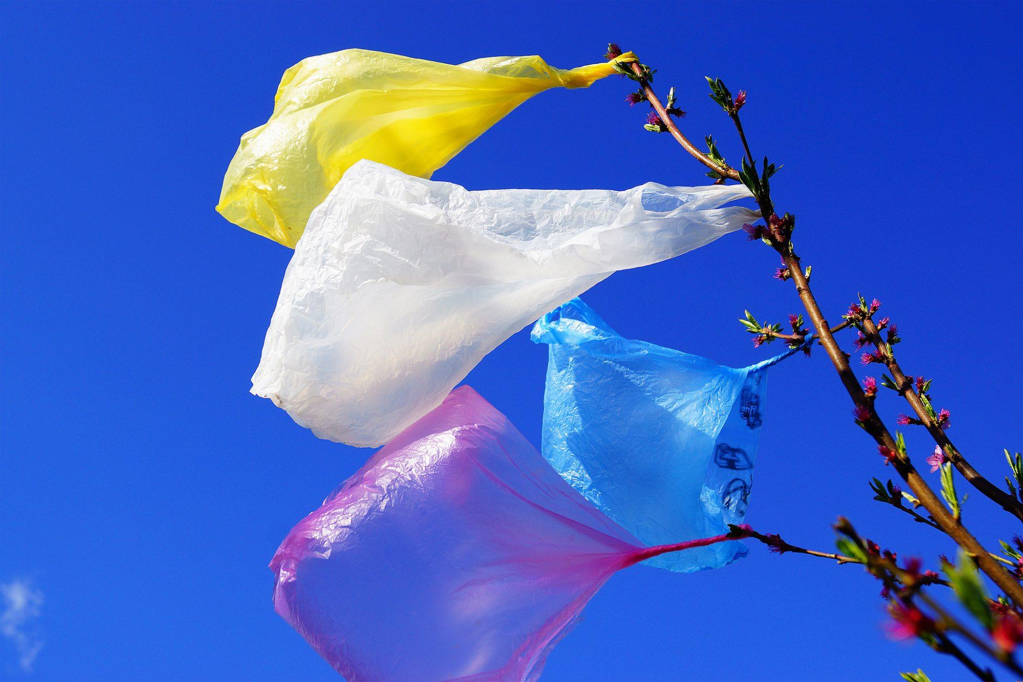 Au Burkina, il transforme des déchets plastiques en toit