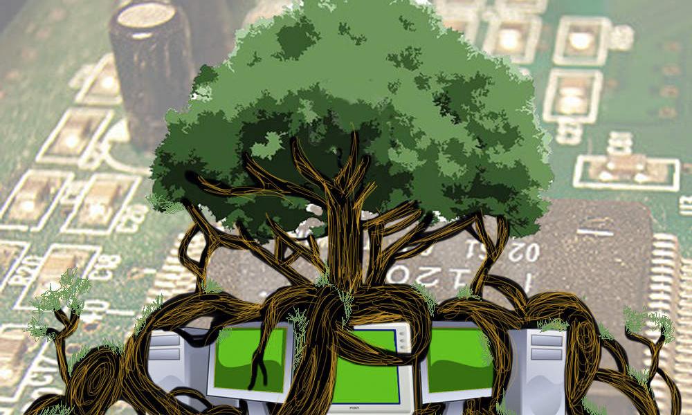 Ecosia, le moteur de recherche qui fait pousser les arbres