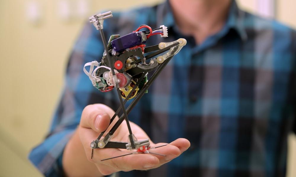 SALTO : le robot secouriste qui s'inspire du lémurien