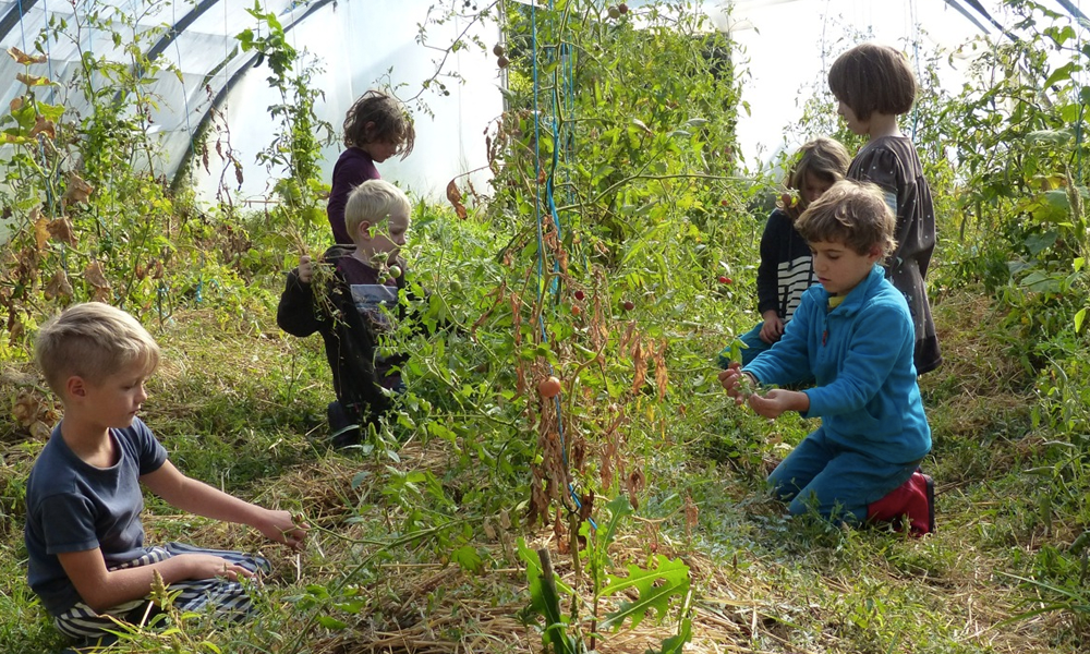 Caminando, l'école participative où les élèves font tout le boulot