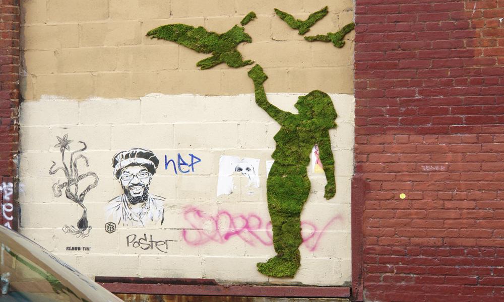 Tous écolo-vandales grâce au graffiti végétal !