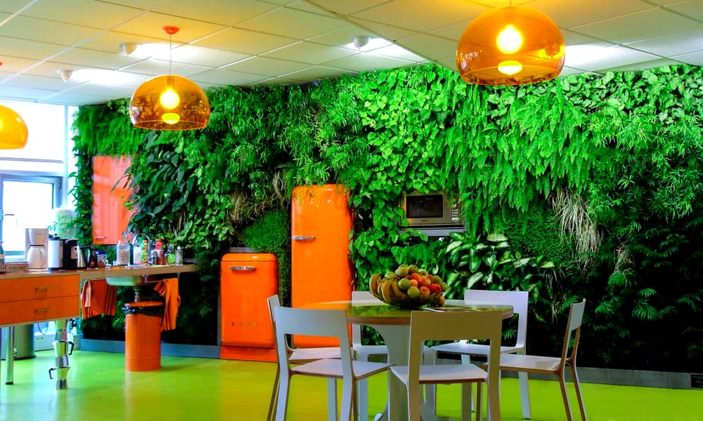 5 idées pour végétaliser votre appartement