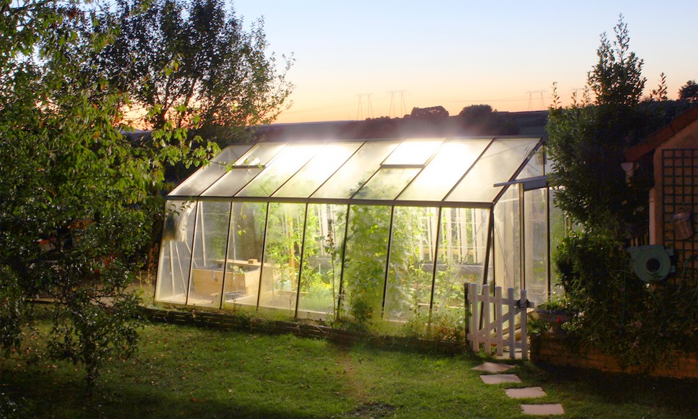 Produisez une demi-tonne de légumes par an avec cette serre connectée