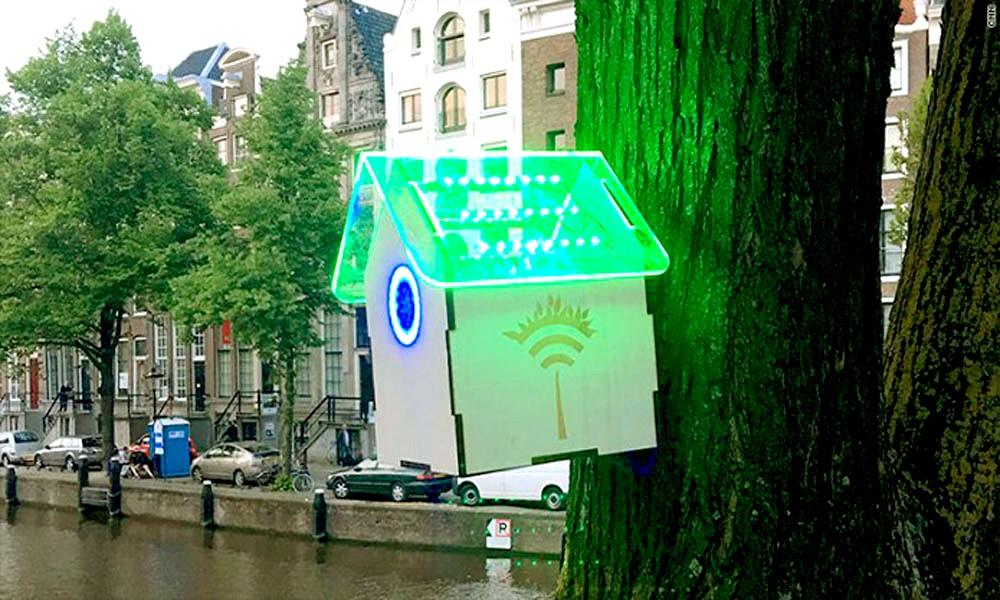 Amsterdam : des nichoirs délivrent du WiFi en ville
