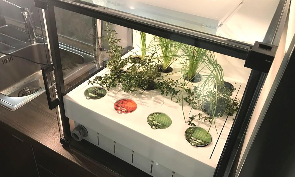 Une mini serre bio pour votre cuisine