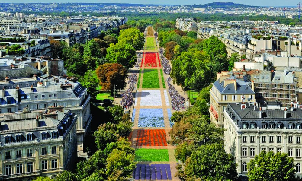 BiodiversiTerre change une avenue parisienne en coin de campagne