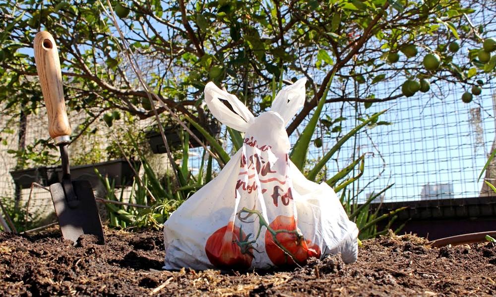Jetez ce sac dans la nature, il en poussera des fruits !