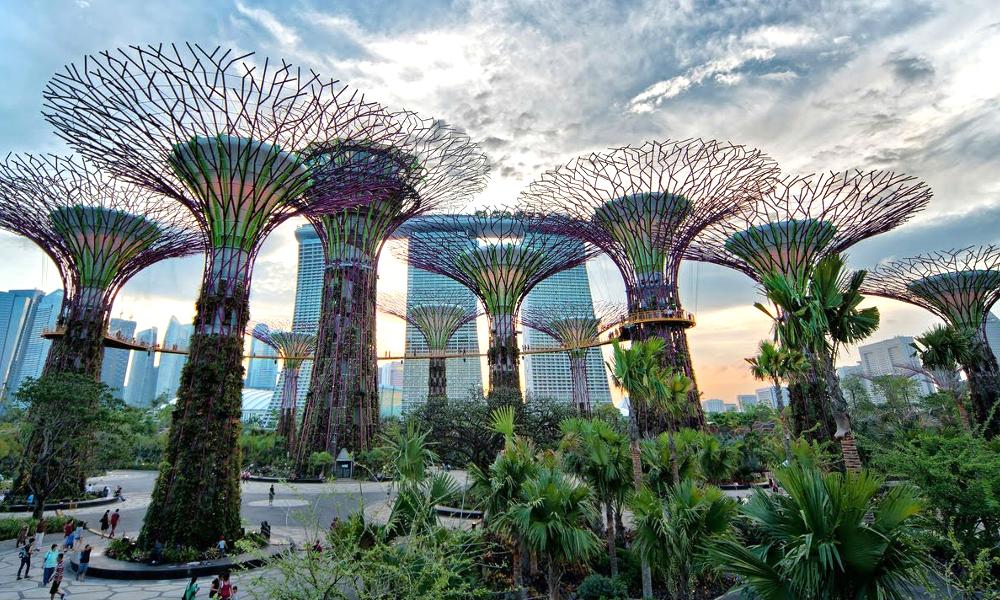 Singapour a inventé le jardin botanique le plus dingue au monde