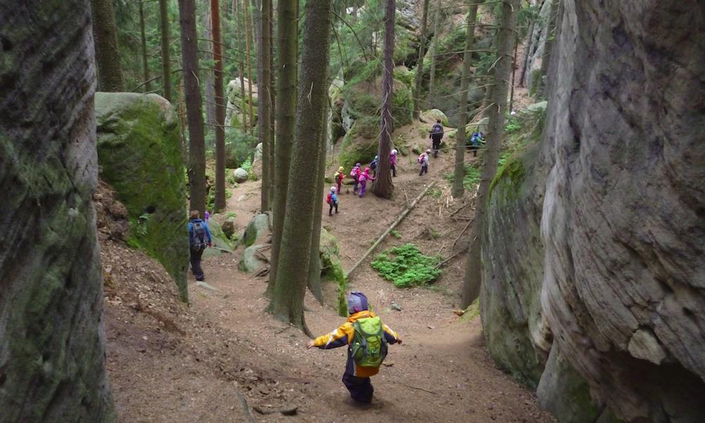 Quand les enfants vont à l'école... dans la forêt
