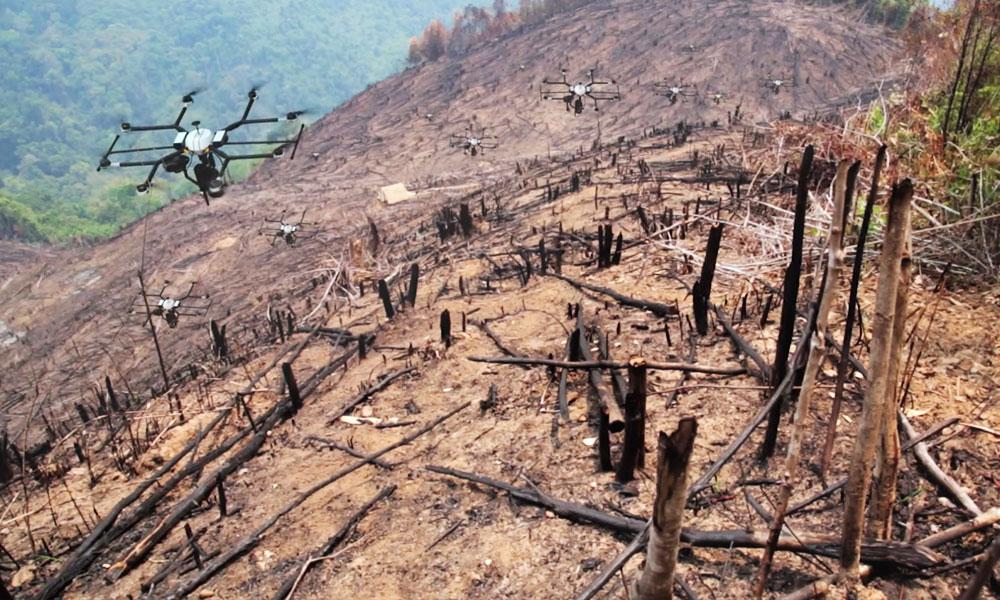 Ce drone replante des arbres dans des endroits inaccessibles