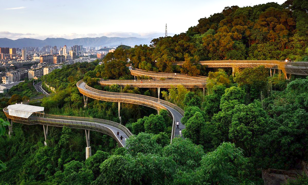 Cette nouvelle muraille de Chine vous emmène par-dessus la forêt