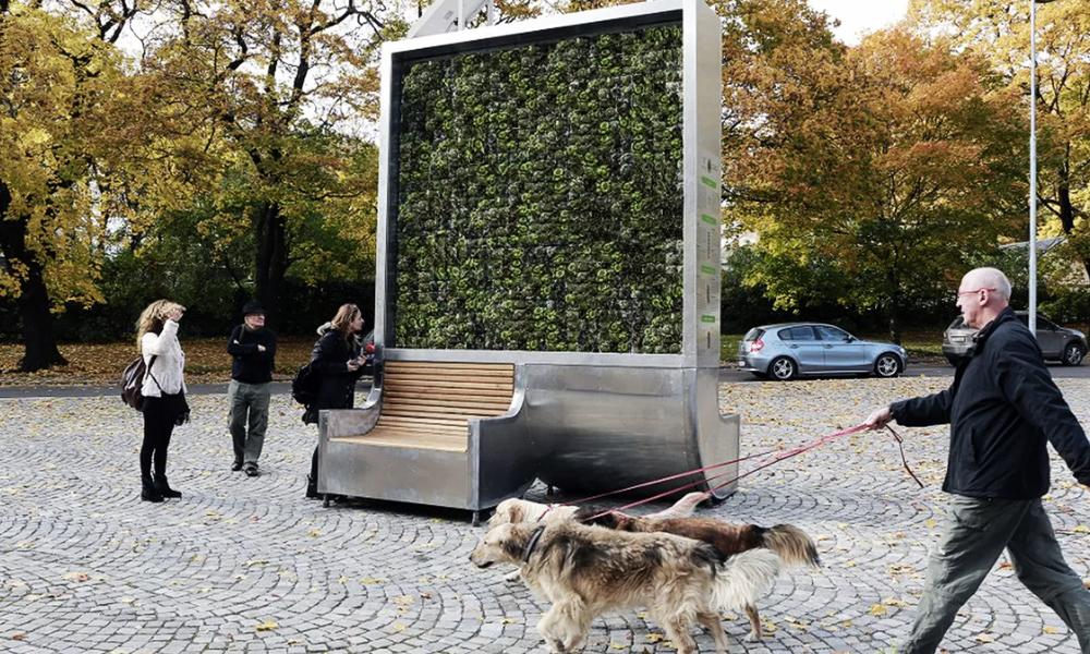 Ce muret végétal dépollue autant que 275 arbres