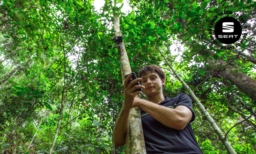 Grâce à cet ingénieur, votre vieux téléphone portable peut sauver une forêt
