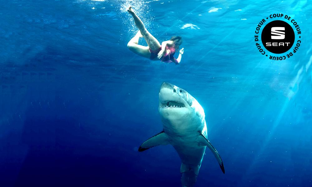 Des Australiens ont inventé une combinaison de plongée anti-requins