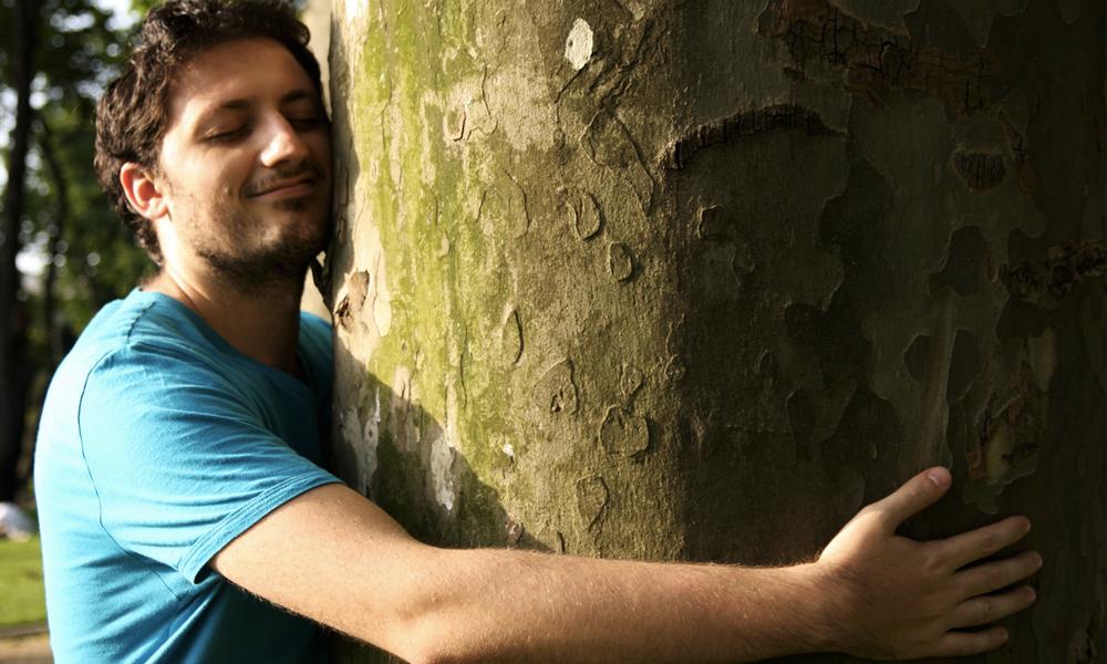 C'est prouvé: faire un câlin à un arbre renforce le système immunitaire