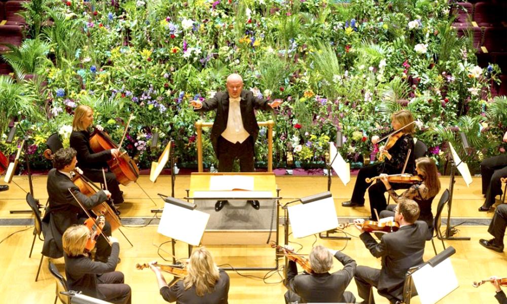 Exit les pesticides, ils soignent les plantes en musique