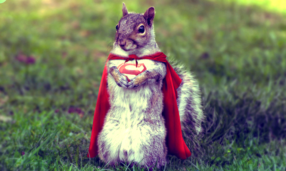 Manger des noix limite les risques d'accident cardiaque