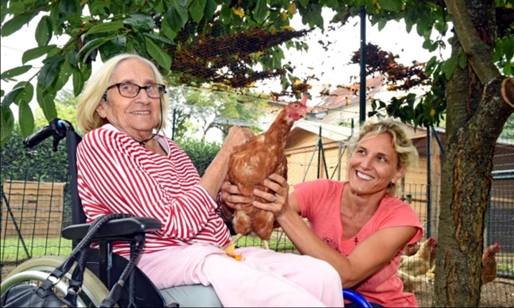 À Nancy, comment une maison de retraite s'est transformée en poulailler