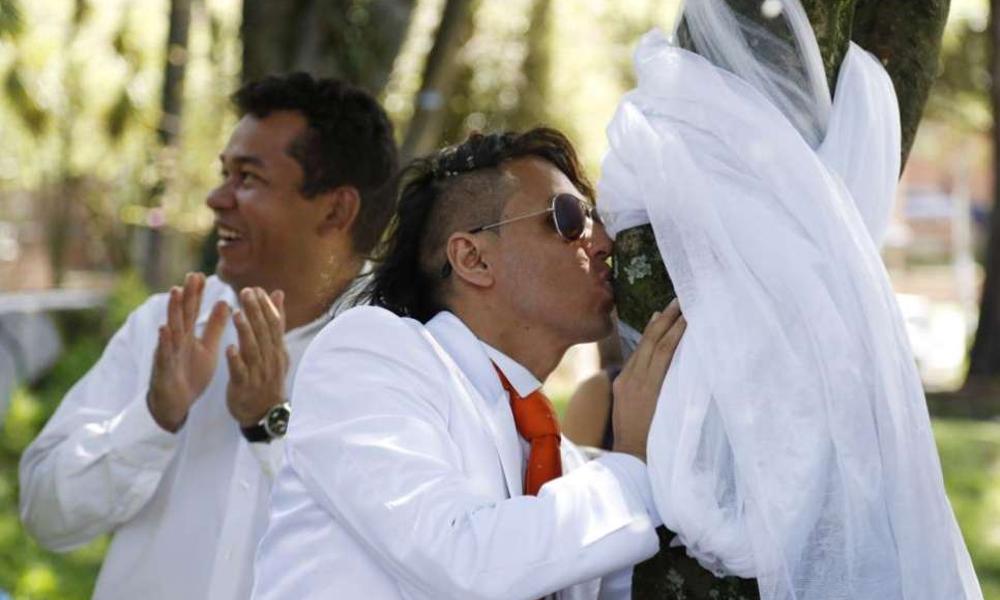 Torres baiser arbre