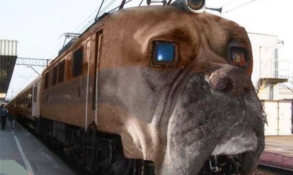 Au Japon, les trains aboient pour éviter les accidents