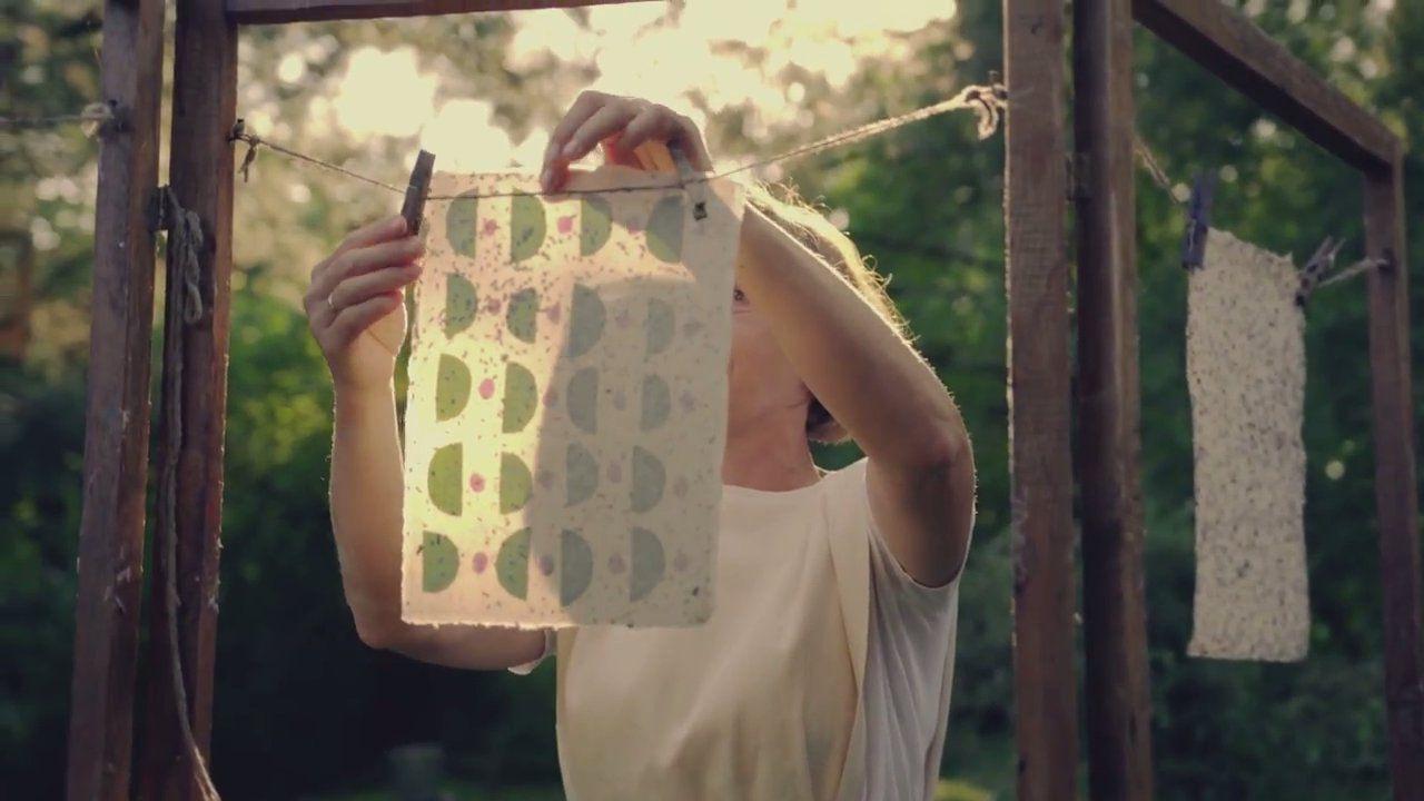 Les abeilles meurent ? Ce papier dopant pourrait bien les sauver