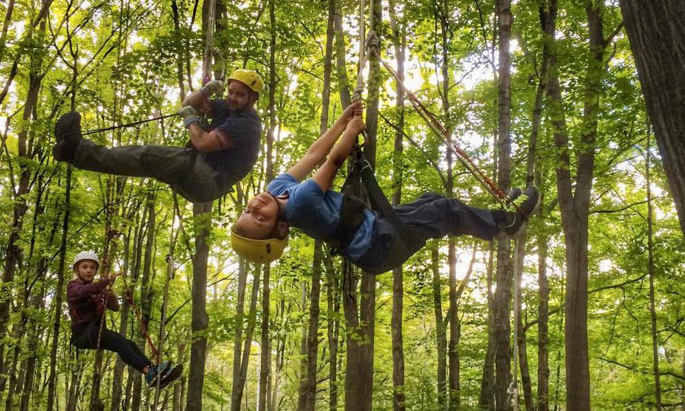 Et si vous profitiez de l'été pour escalader des arbres?