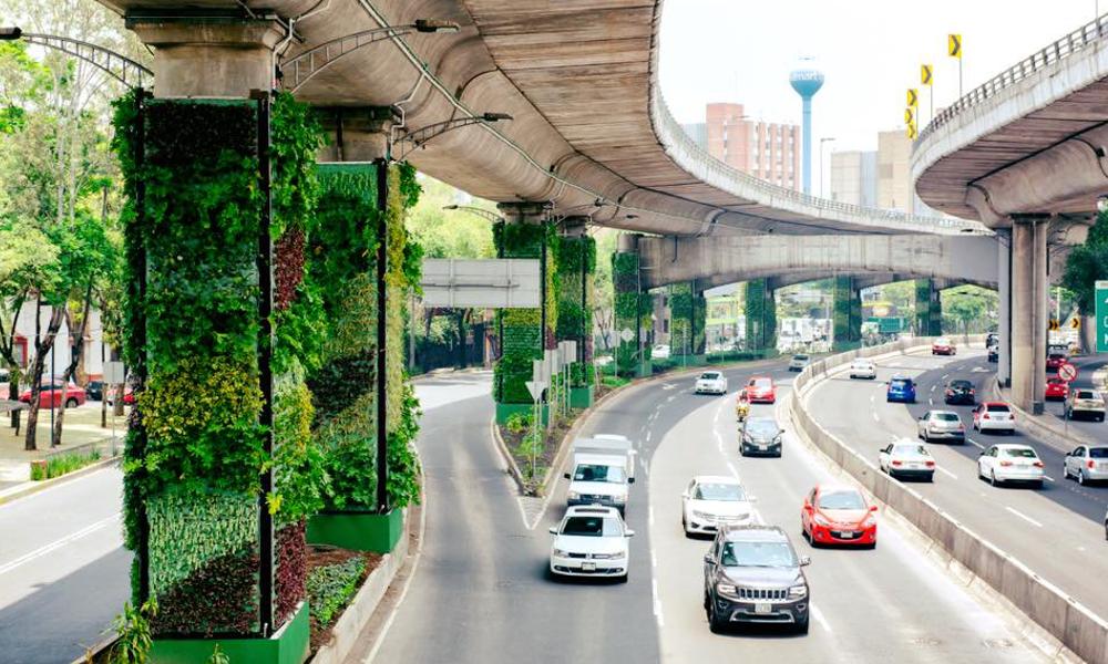 Des périphériques végétaux pour dépolluer les centres-villes