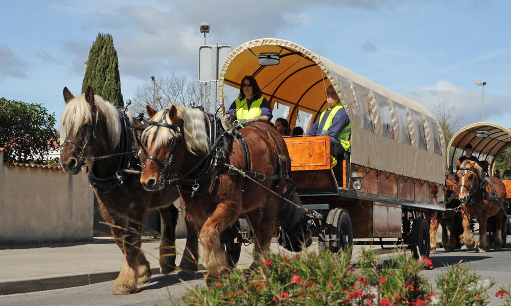 À Montpellier, le car scolaire du futur, c'est 2 chevaux et 1 calèche