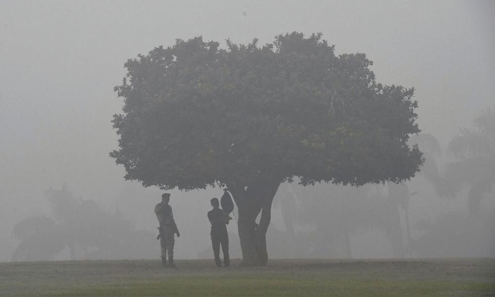 En Inde, on plante des forêts en ville pour lutter contre la pollution