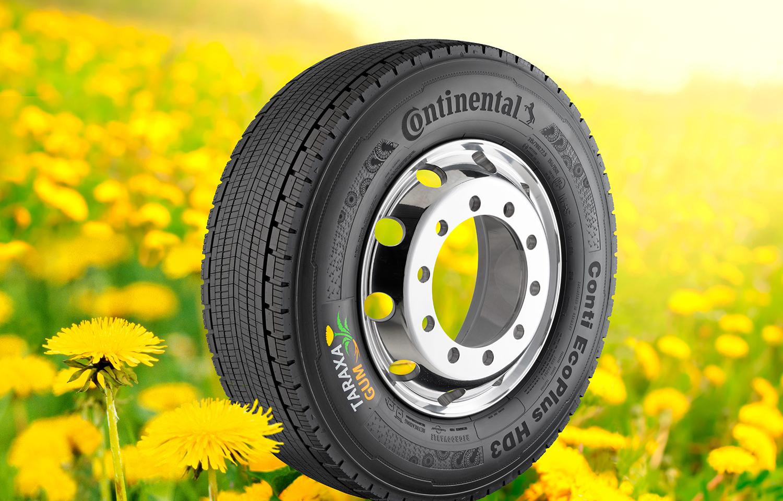 Continental rêve d'un pneu écolo à base de pissenlits