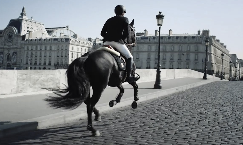 Pour ne plus être bloqué dans le métro : et si on revenait au cheval ?