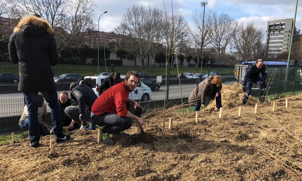 Boomforest, l'asso parisienne qui replante des forêts le long des autoroutes