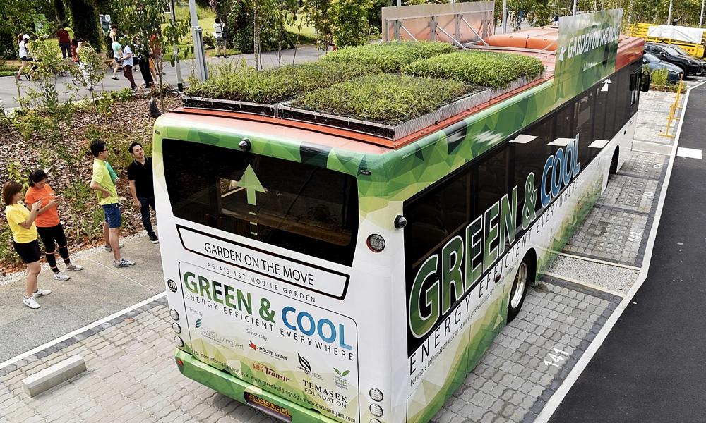 Canicule : pour rafraîchir les passagers, Singapour installe du gazon sur ses bus