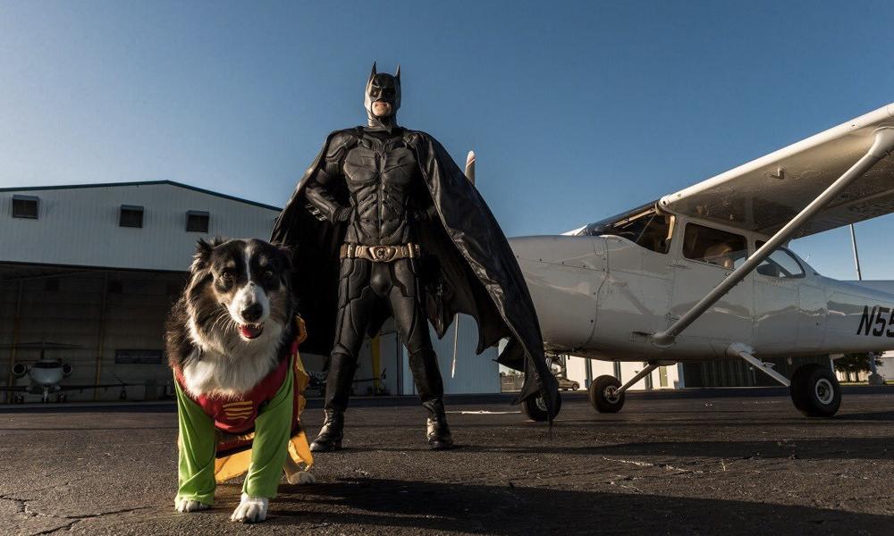 Il parcourt les USA déguisé en Batman pour sauver les animaux abandonnés