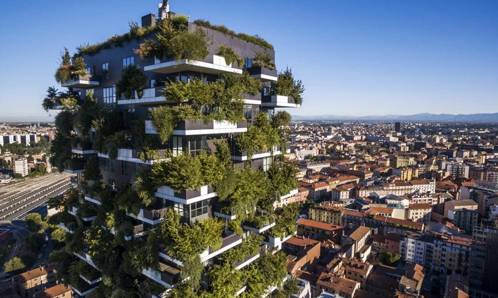 Canicule : Milan va planter 3 millions d'arbres pour refroidir son centre-ville