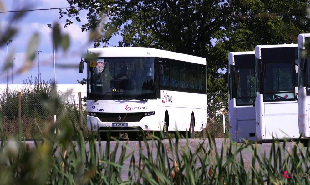 En Bretagne, des chauffeurs de cars scolaires n'ont qu'un seul bras et conduisent parfaitement bien
