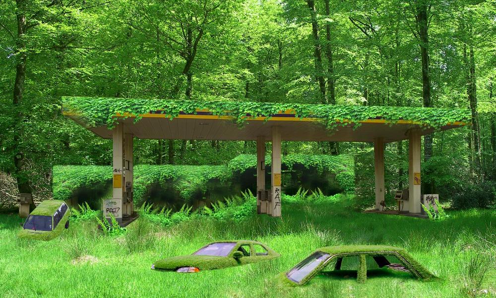 Pour alerter sur le dérèglement climatique, ce Français a transformé une station-service en forêt