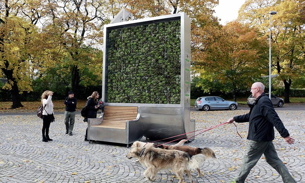 Pollution urbaine : Londres installe des arbres artificiels pour nettoyer l'atmosphère