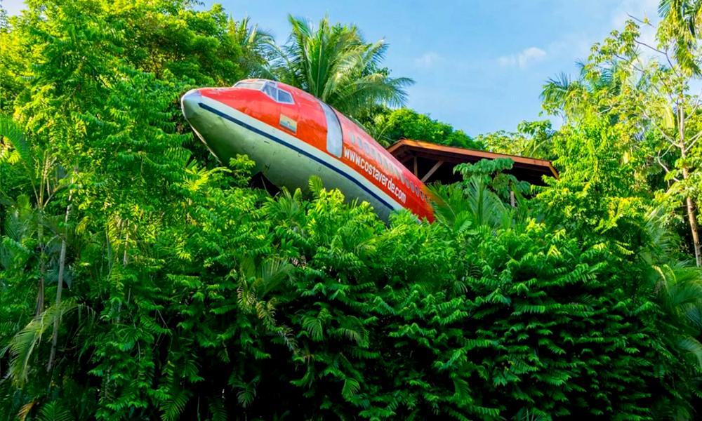 Qui veut dormir dans cet hôtel-avion crashédans la forêt ?
