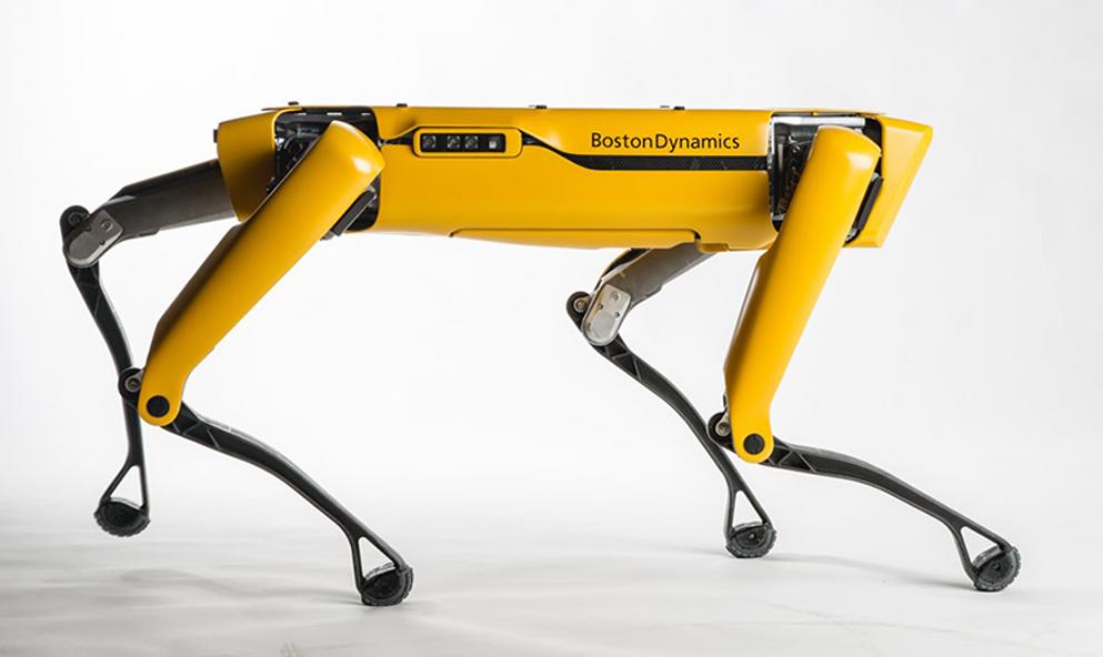 L'histoire de Spot, le «chien-robot» qui veut devenir votre meilleur ami