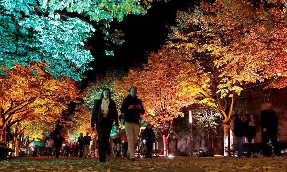Demain, les rues pourraient être éclairées par… des plantes